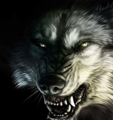 Keto by WolfRoad Wolves from Ghost Forest Last Paradise wolf werewolf fangs… Anime Wolf, Werewolf Art, Fenrir Tattoo, Arte Cholo, Wolf Hybrid, Saarloos, Beast Creature, Fantasy Wolf, Inspiration Quotes