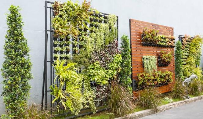 8 Cara Membuat Taman Kecil Di Depan Rumah Mini Dan Indah