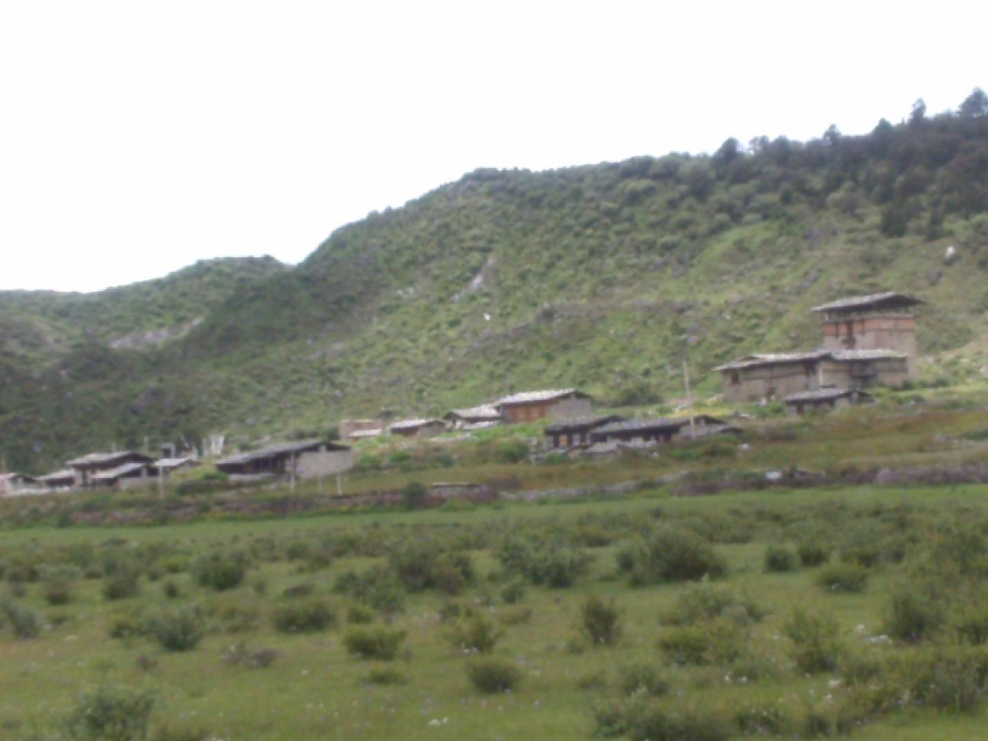 Tshojong