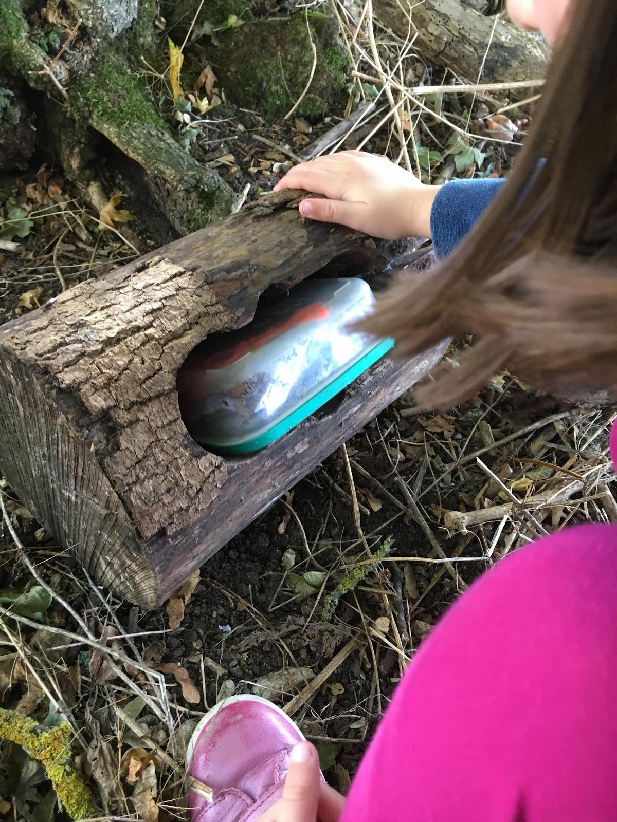 Small geocache inside a log