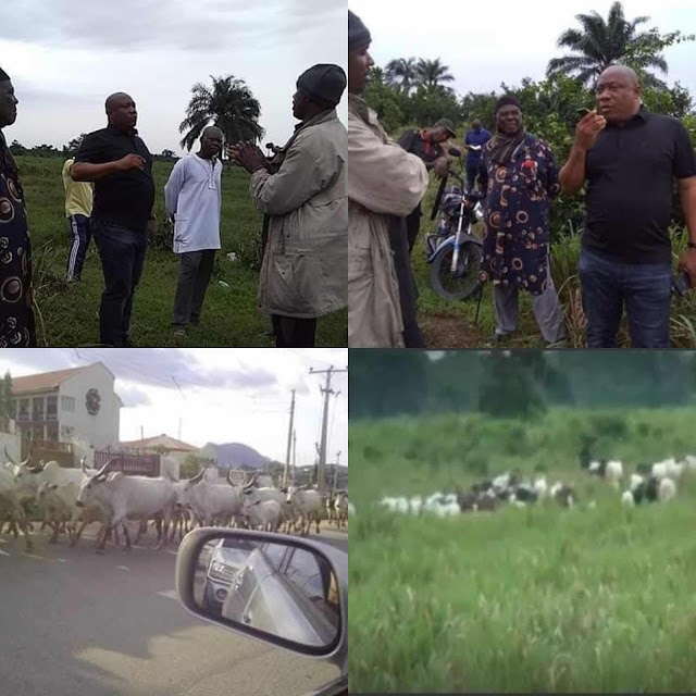 Cattle Herders Given Two Days to Vacate Lueke in Khana LGA of Rivers State