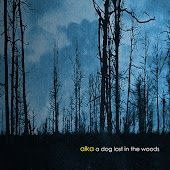 A Dog Lost In The Woods