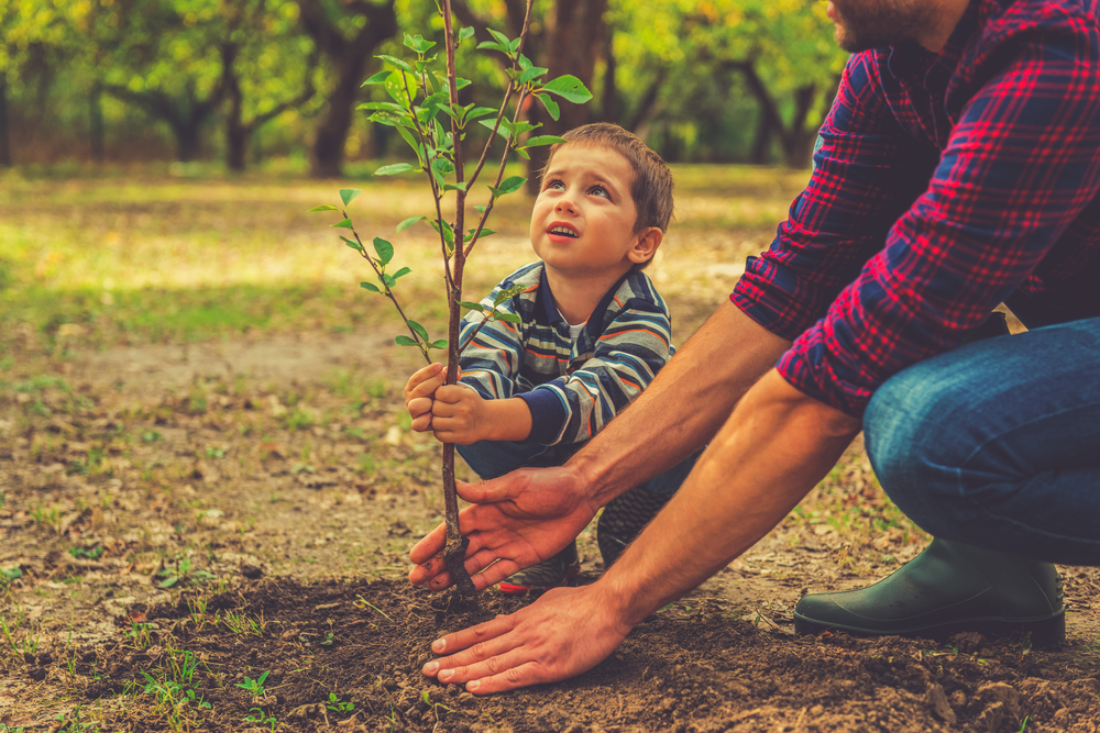 a man and child planting a tree representing brand stories which is why you should Stock Makers In Your Store