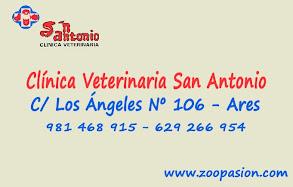 San Antonio. Clínica Veterinaria, colaborador coa A.D.R. Numancia de Ares.