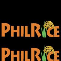 http://www.philrice.gov.ph/