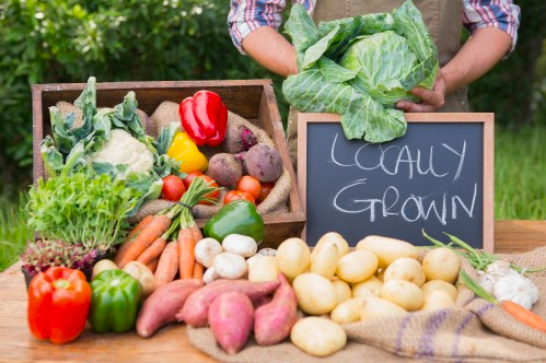 CSA's: What They Are & Where to Find them | Sierra Club