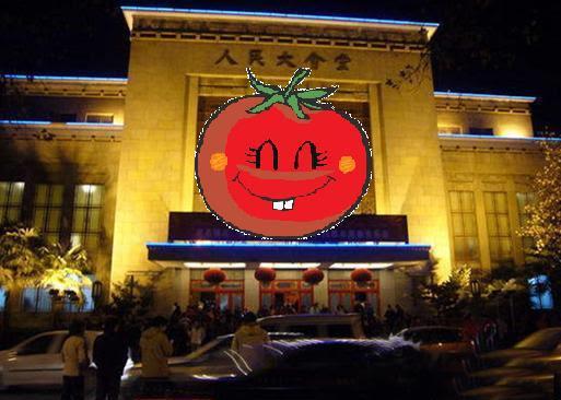 红柿革命:人大为公,为公人大!
