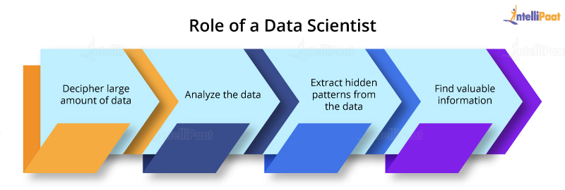 Data Scientist Role