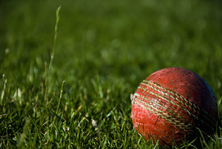 Leadership Lessons From Cricket