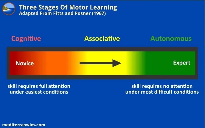 What are the three stages of Motor learning?