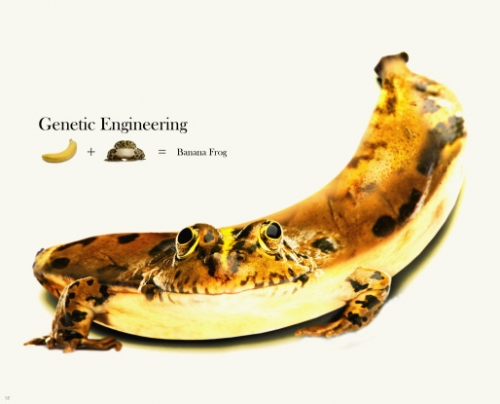 GeneticTopics