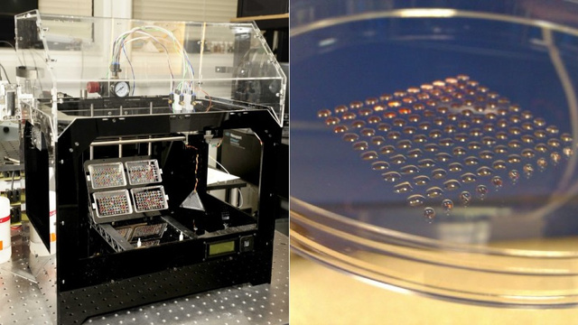 La impresora 3D - Como fabricar en 3D y aplicar en Medicina YEq2Jxa4OkuwuBbw-vaIRBjfnm5F2OXRs-fKvirjzkNtnDVcbv1J91Wnw8gAH4c5gwCjXEjQKmuHBvjzxOv42baghWfsZWs8S62m5xFDlh59r8BFBz5Zy6wkKw