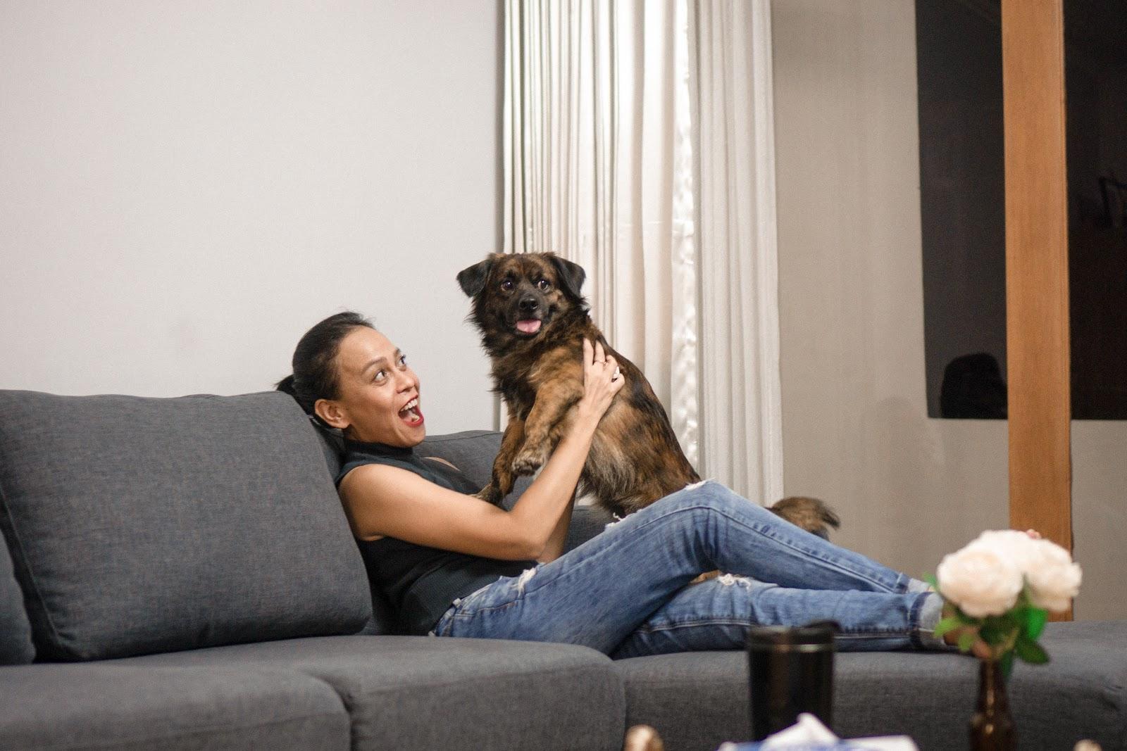 Kost di apartemen memungkinkan kamu untuk tinggal dengan binatang peliharaan.