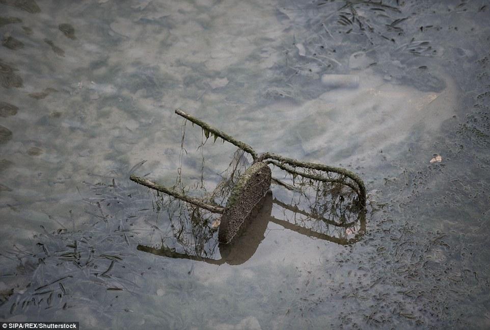 發現:運河最後一次排水,2001年,超過40噸的垃圾和廢棄物