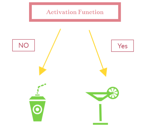 Activation Function Predictions