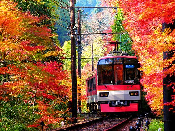 ランキング第9位 叡山電車
