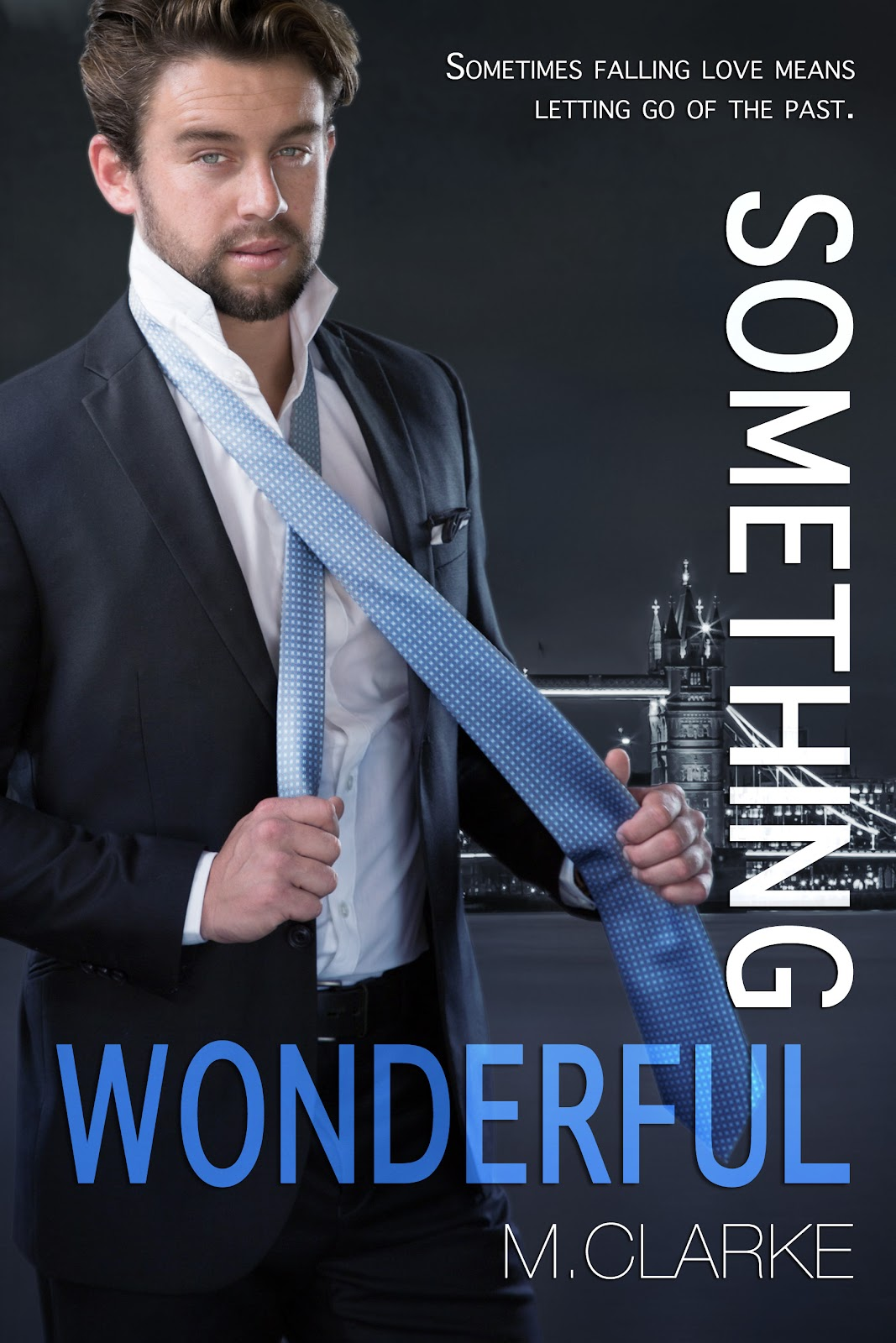 SomethingWonderfulEbook.jpg