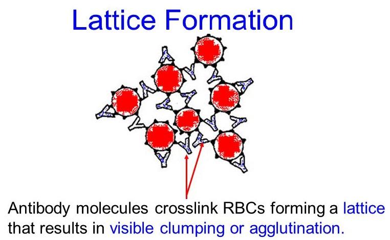 Lattice formation