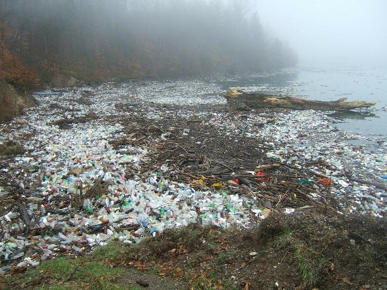 C:\Users\PC\Downloads\pollution-203737_1920.jpg