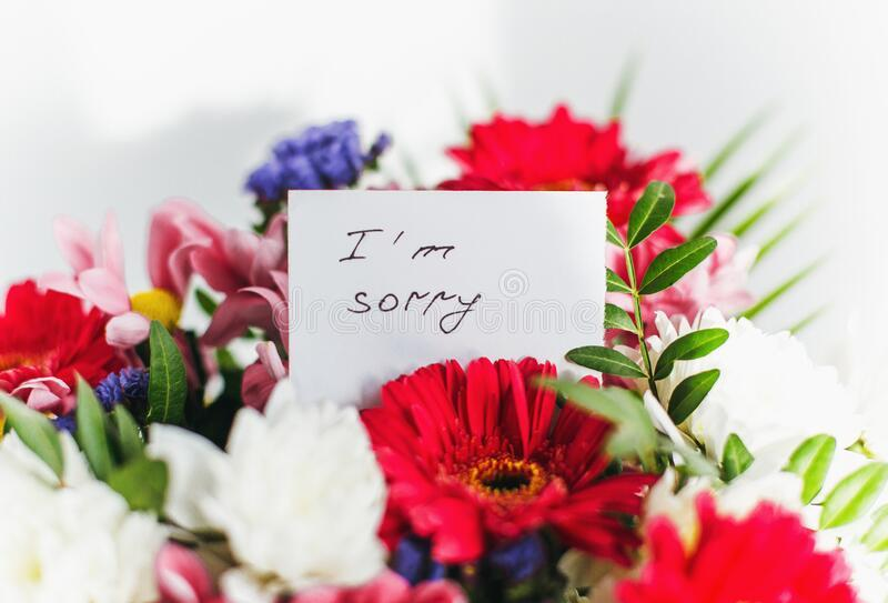 451 Sorry Card Flowers Photos - Free & Royalty-Free Stock Photos from  Dreamstime