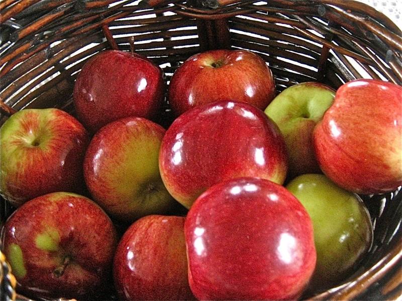 Яблоки для обработки воском, парафином