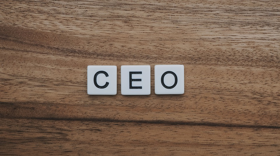 What Actions Can Disqualify a CEO's Position?