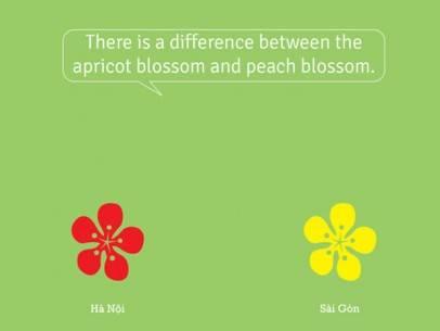 so-sanh-vui-giua-ha-noi-va-sai-gon-1366260760211 - ivivu.com