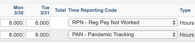 A sample timesheet showing use of the RPN and PAN codes