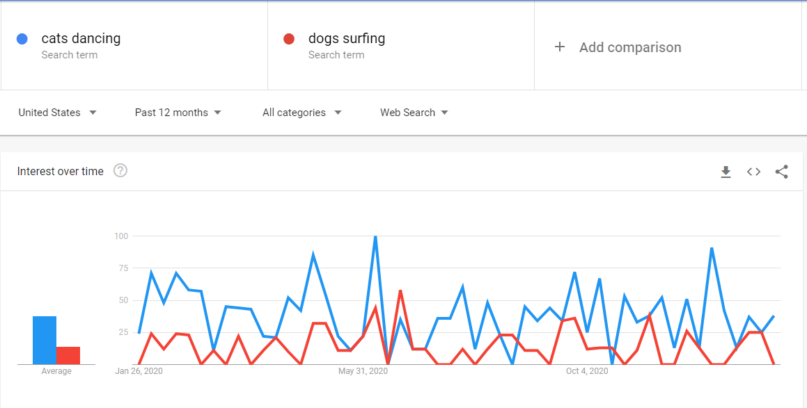 Google Trends dancing cats vs dogs surfing