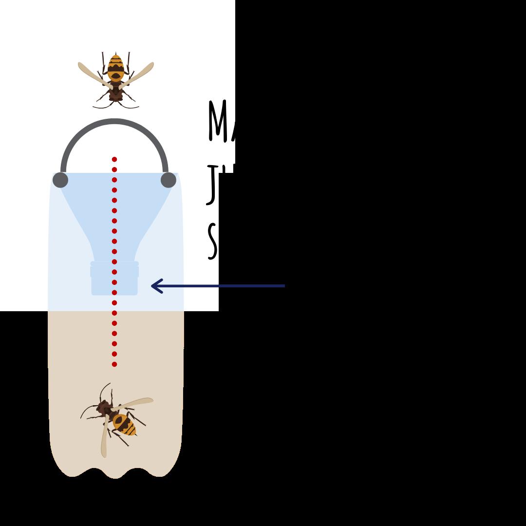 diy wasp trap instructions step 4
