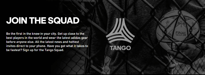 adidas promotion strategy referral