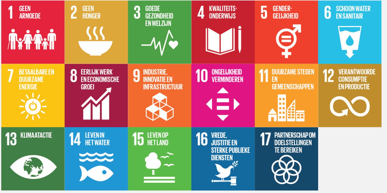 De 17 Sustainable Development Goals