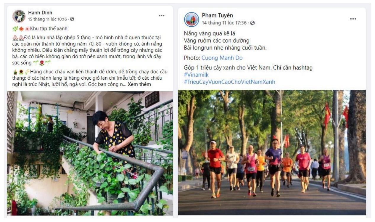 Chiến dịch xanh của cộng đồng khép lại, hành trình trồng cán mốc triệu cây xanh cho Việt Nam bắt đầu