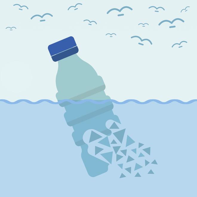 Kết quả hình ảnh cho hạt vi nhựa