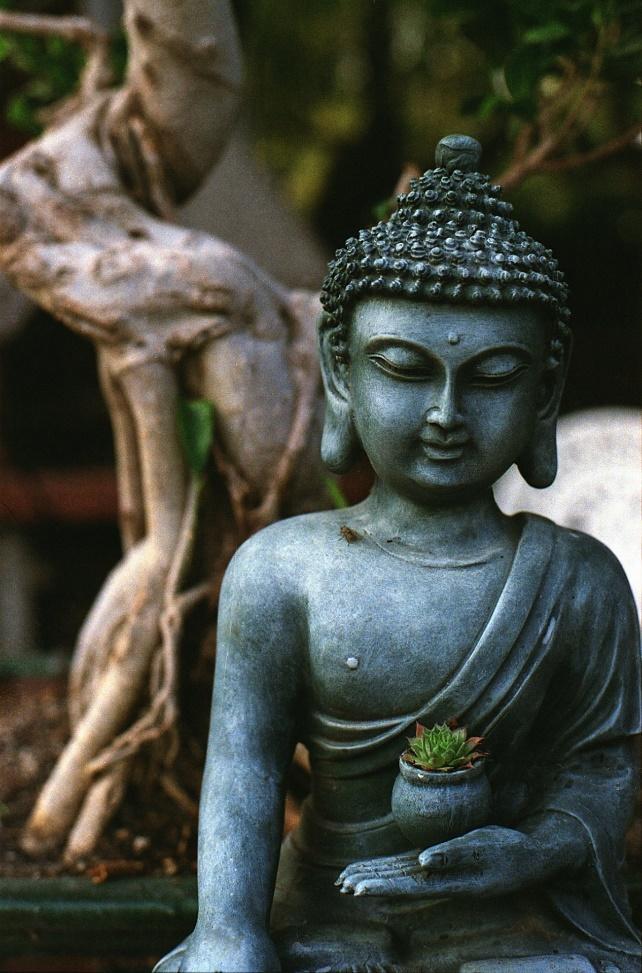 Estátua de Buda, Tranquilidade