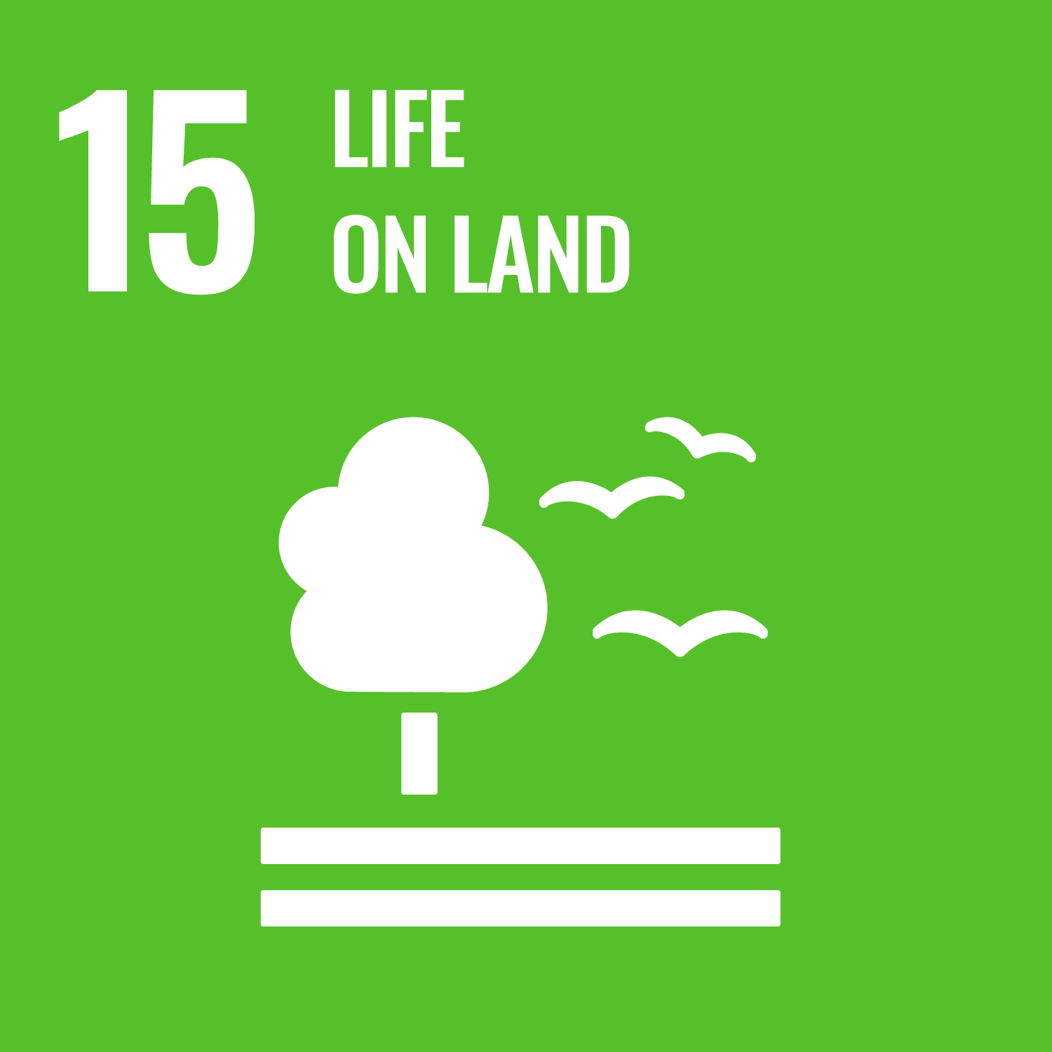 Sustainable Development Goal 15. Sustainably manage forests, combat desertification, halt and reverse land degradation, halt biodiversity loss.