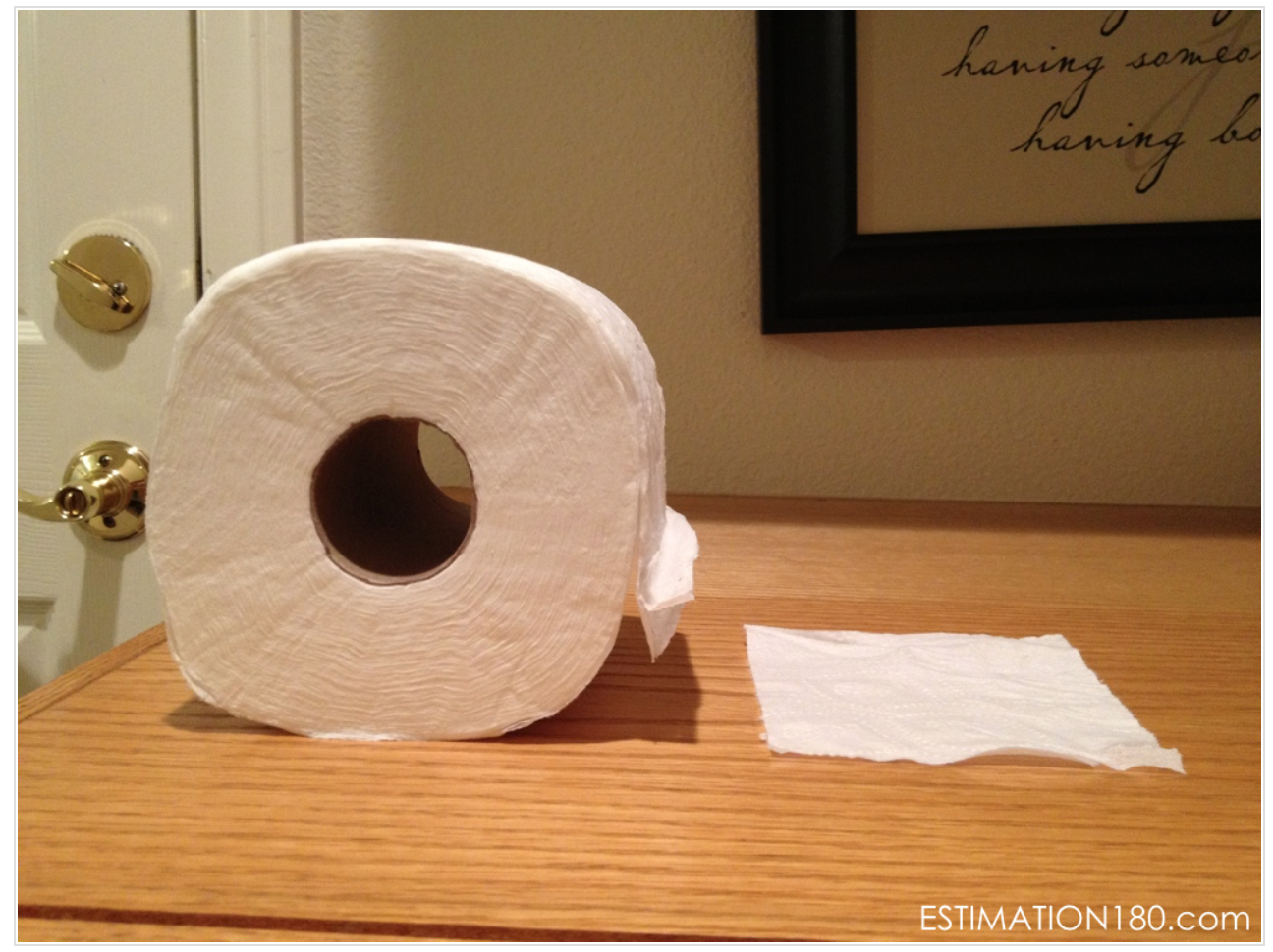 Image of single sheet of toilet paper next to a full roll of toilet paper