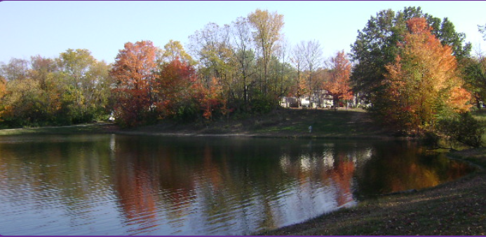 lake with surrounding red and green leaved trees