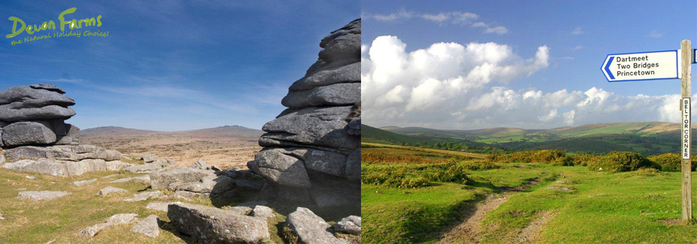 Get outdoors while on holiday in Devon and explore Dartmoor.